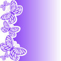 Purple butterfly Stock Images