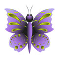 Purple butterfly with pattern