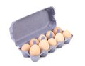 Purple cardboard egg box with ten brown eggs isolated clipping path Stock Image