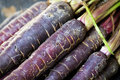Purple Carrots Royalty Free Stock Images