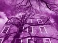Purpurová budova