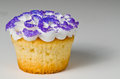 Purple Cupcake Royalty Free Stock Photography
