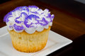 Purple Cupcake Stock Photography