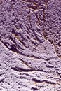 Purple decorative plaster as a background Royalty Free Stock Photo