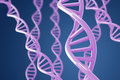 Purple DNA helices on a blue background Royalty Free Stock Photo
