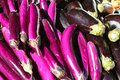 Purple eggplants at farmers market a large pile of bright outside a Stock Image