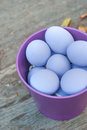 Purple eggs in bowl Stock Photography