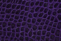Purple embossed leather texture background Royalty Free Stock Photo