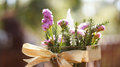 Purple flower in vase blur nature background Royalty Free Stock Photo