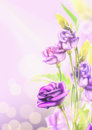 Purple flowers on blured background with bokeh floral corner border Royalty Free Stock Photography