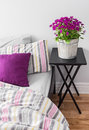 Purple flowers in a bright bedroom decorating contemporary Stock Image