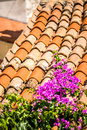 Purple flowers on Mediterranean roof tiles Royalty Free Stock Photo