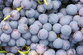 Purple grape Royalty Free Stock Image