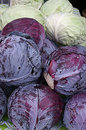 Purple and green cabbages for sale at outdoor market Stock Photography