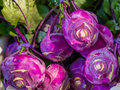 Purple Kohlrabi Cabbage Vegetables Royalty Free Stock Photo