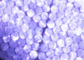 Purple metallic Lights Festive background. Abstract Christmas twinkled bright background with bokeh refocused silver lights Royalty Free Stock Photo