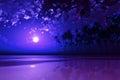 Purple moon over tropic sea full coconut island at Stock Photos