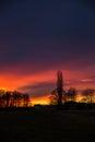 Purple and orange Sunset behind Trees, Germany Royalty Free Stock Photo