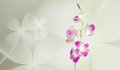 Purple orchid flowers on floral background Royalty Free Stock Photo