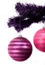 Purple and pink christmas balls Royalty Free Stock Photo