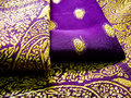 Purple saree Stock Image