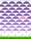 Purple spring umbrellas rain grass repeating in shower with green Stock Photos