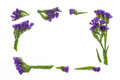 Purple statice flowers border frame Royalty Free Stock Photo
