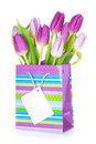 Purple tulip bouquet in gift bag Royalty Free Stock Photo