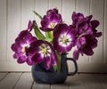 Purple tulips in a blue vase Royalty Free Stock Photos