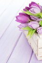 Purple tulips box over wooden table Royalty Free Stock Photo