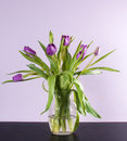 Purple tulips vase black table lilac wall Stock Image