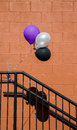 Purple White and Black Baloons Royalty Free Stock Photos