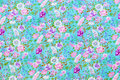 Purple and white flowers background texture Royalty Free Stock Photo