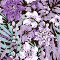 Purple and white flowers with leaves. Black background.