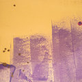Purple an yellow picture of a background Royalty Free Stock Images