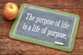 The purpose of life concept is a text on a slate blackboard against red barn wood Royalty Free Stock Image