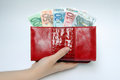 Purse with banknotes in hand red euro is Royalty Free Stock Images