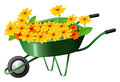 A pushcart full of flowers illustration on white background Royalty Free Stock Photo