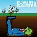Pushing Daisies Royalty Free Stock Photography