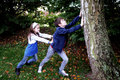 Pushing the tree siblings playing outside a Royalty Free Stock Photos