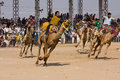 Pushkar india november pushkar camel mela pushkar camel fair on november in pushkar rajasthan india this fair is the largest Royalty Free Stock Photography