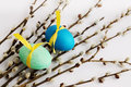 Pussy willow and eggs passover holiday still life with ribbon Royalty Free Stock Photo