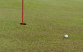 Putt golf ball on the green ready to in the hole Royalty Free Stock Image