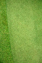 Putting green golf top view Royalty Free Stock Photo