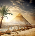 Pyramid of Khafre Royalty Free Stock Photo