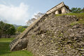 Pyramid at palenque chiapas mexico truins the archeological site of Stock Photography