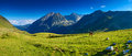 Pyrenees mountains summer panorama with horses Royalty Free Stock Photos
