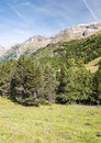 Pyrennes mountains benasque with trees situated in the spanish province of huesca it s a sunny day in it s a vertical Royalty Free Stock Images