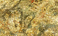 Pyrite background macro photo Royalty Free Stock Photo