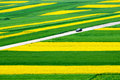 stock image of  Qinghai Lake